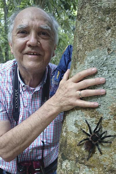 tarantula_gama